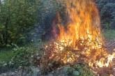 Le brûlage des végétaux est interdit par arrêté préfectoral !