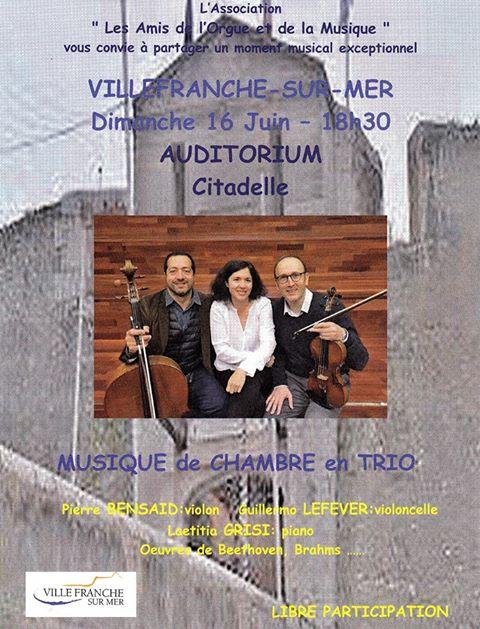 """Concert Musique de chambre """"Les Amis de l'Orgue et de la Musique"""" - Œuvres de Beethoven et Brahms @ Auditorium - Citadelle"""
