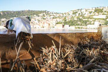 Retour en images - Nettoyage des plages, Samedi 17 Octobre 2020