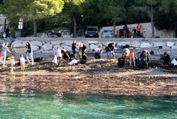 Magnifique élan de solidarité ce matin pour le grand nettoyage des plages : Rochambeau, La Darse, Les Marinières.